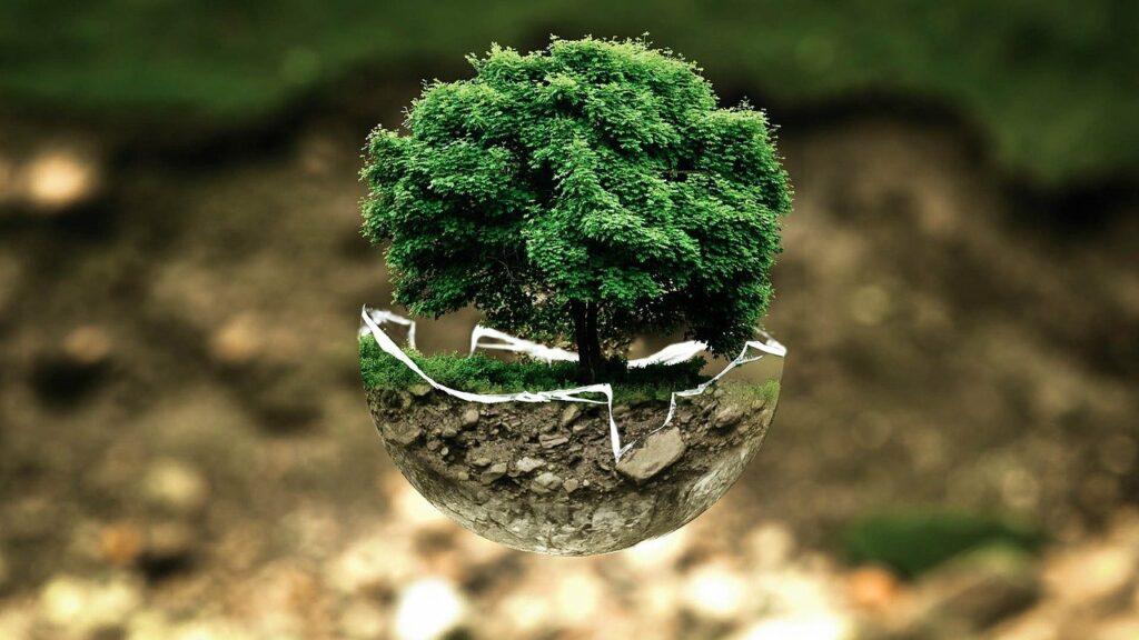 Ekologia iśrodowisko wdziałaniach CSR